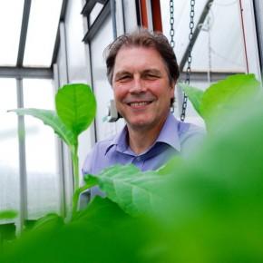 Prof Chris Hawes